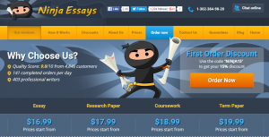ninjaessays review